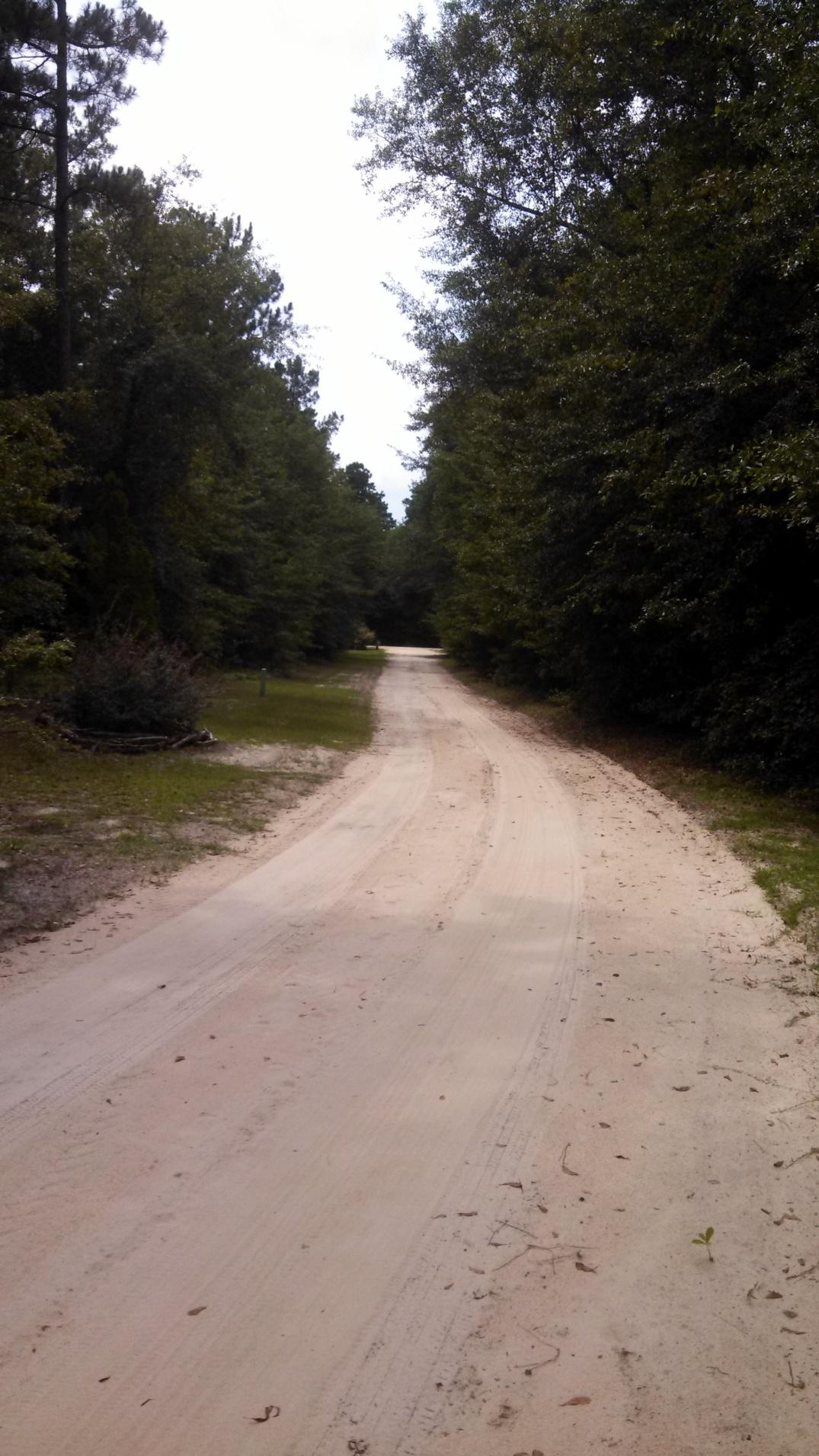 1-driveway