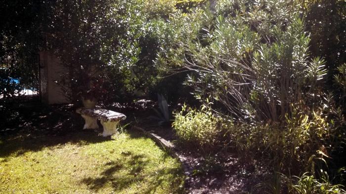 1-secret garden 4